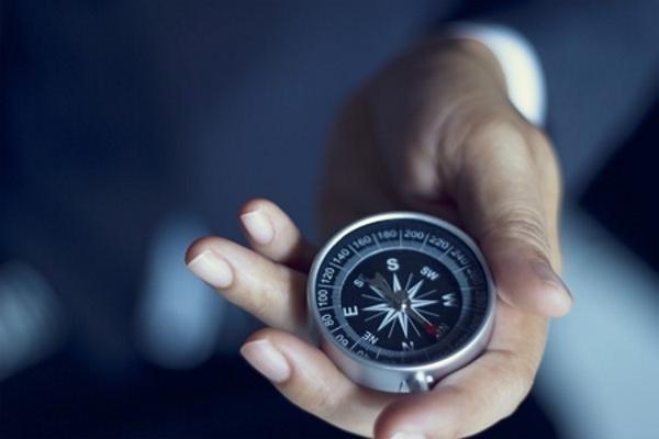 Palomino Capital - Considerations